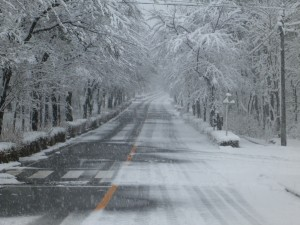 雪② (1)